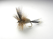 The irresistible dry fly, Woodchuck irresistible, fly fishing in the Adirondacks